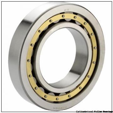 1.378 Inch | 35 Millimeter x 3.15 Inch | 80 Millimeter x 0.827 Inch | 21 Millimeter  LINK BELT MA1307TV  Cylindrical Roller Bearings
