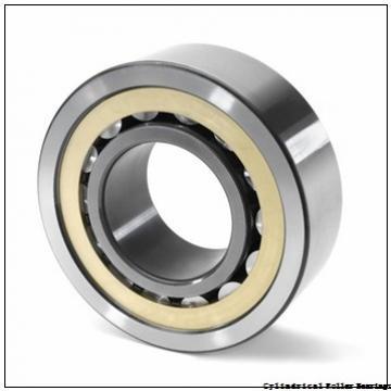 4.134 Inch | 105 Millimeter x 8.858 Inch | 225 Millimeter x 1.929 Inch | 49 Millimeter  LINK BELT MR1321EX  Cylindrical Roller Bearings