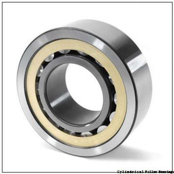 3.74 Inch | 95 Millimeter x 4.469 Inch | 113.513 Millimeter x 2.188 Inch | 55.575 Millimeter  LINK BELT MA5219  Cylindrical Roller Bearings #1 image